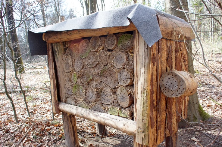 Bienenwand