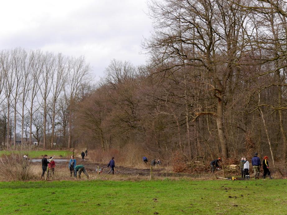 Forsteinsatz Knauheide 2016